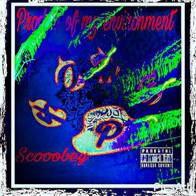 Product Of My Environment Scooobey front cover