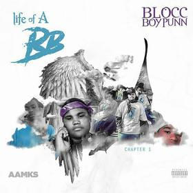 Life Of A Blocc Boy: Chapter 1 BloccBoyPunn front cover