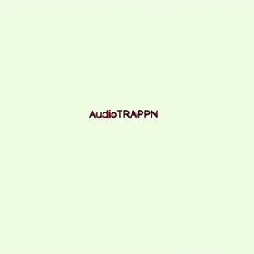 Audio TRAPPN Hollyw00d Flexx Luger front cover