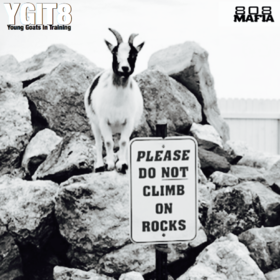 YGIT8 Young Goats In Training front cover