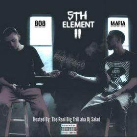 5th Element 2 ft F5Chicago Project Pat front cover