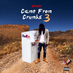 Came From Crumbs 3 Q Brady front cover
