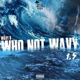 WhoNotWavy 1.5 WavyB front cover
