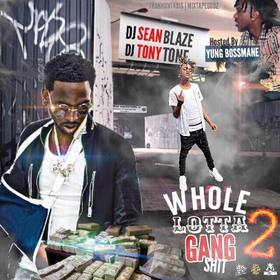 Whole Lotta Gang Shit 2 DJ Seanblaze front cover