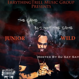 The Same But Not The Same Junior Wild front cover