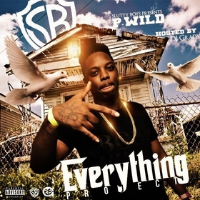Everything Project P-Wild front cover
