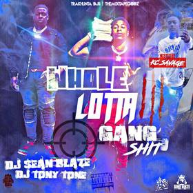 Whole Lotta Gang Shit 3 DJ Seanblaze front cover