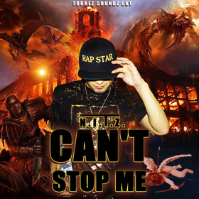 Can't Stop Me N.I.T.Z front cover