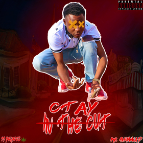 In The Cut Ctay front cover