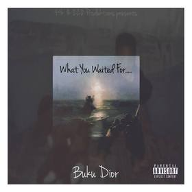 What You Waited For... Buku Dior front cover