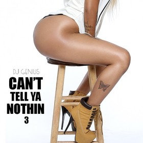 Can't Tell Ya Nothin 3 DJ Genius front cover