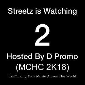 STREETS IS WATCHING 2 DJ Effect front cover