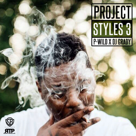 Project Styles 3 P-Wild front cover