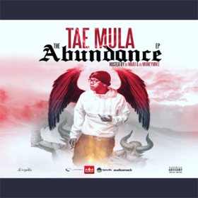 The Abundance Tae Mula front cover