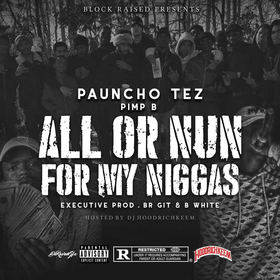 All Or Nun: For My Niggas Pauncho Tez front cover