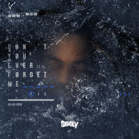 Don't You Ever Forget Me Skooly front cover