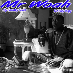 My Country Tears MrWoah front cover