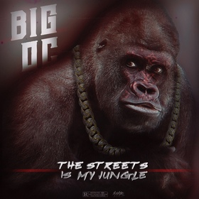 The Streets Is My Jungle Big OC front cover