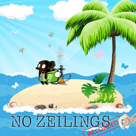 No Zeilings Reloaded zztro front cover