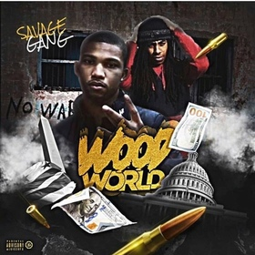 Wood World SG SAVAGE front cover