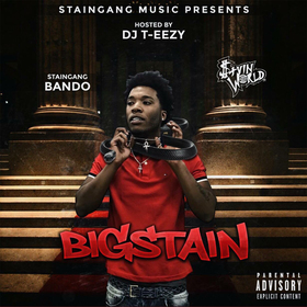 BigStain StainGang Bando front cover