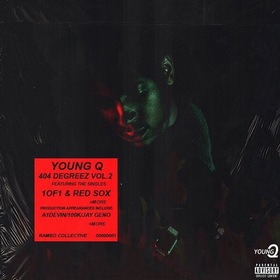 404 Degreez Vol. 2 YoungQLaFlare front cover
