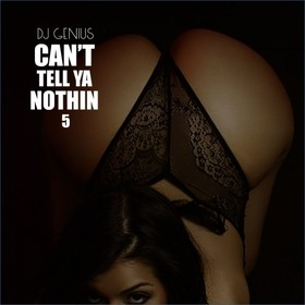 Can't Tell Ya Nothin 5 DJ Genius front cover