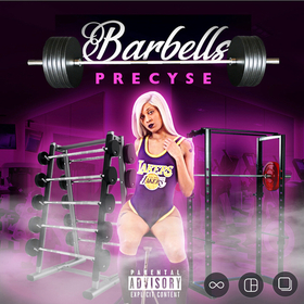 Barbells Precyse front cover