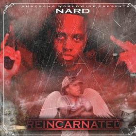 Nard-Reincarnated king koopA front cover