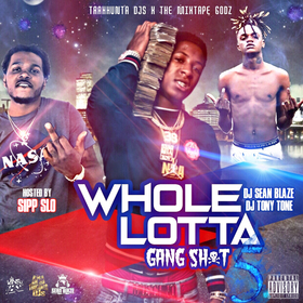 Whole Lotta Gang Shit Vol 5 DJ Seanblaze front cover