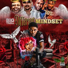 Different mindset TrillOnStand front cover
