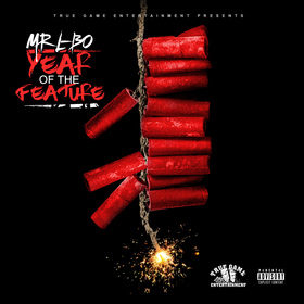 Year of the Feature MR L-BO front cover