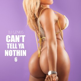 Can't Tell Ya Nothin 6 DJ Genius front cover