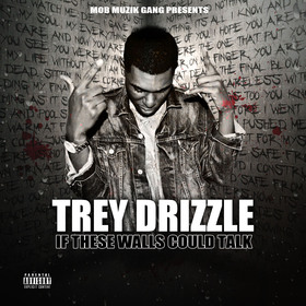 If These Walls Could Talk Trey Drizzle front cover