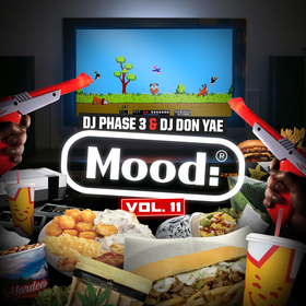 Mood: Vol. 11 (Duck Hunt) DJ Phase 3 front cover