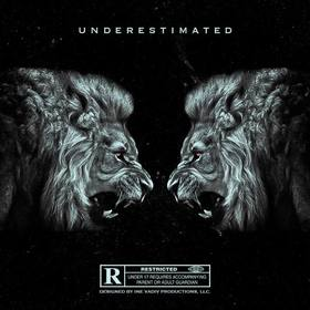 Underestimated EP PDE Twin front cover