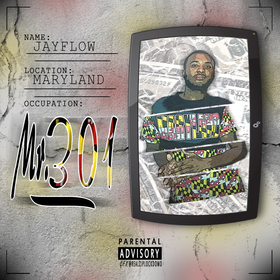 Mr. 301 Jay Flow front cover