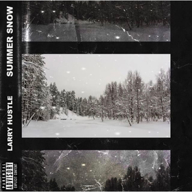 Summer Snow Larry Hustle front cover