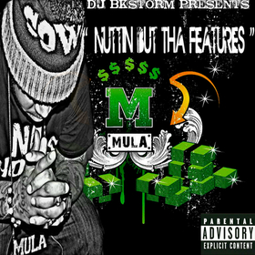 Nuttin But Tha Features Mula-N-Effect front cover