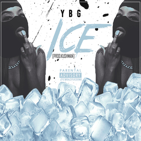 Ice DJ S.R. front cover