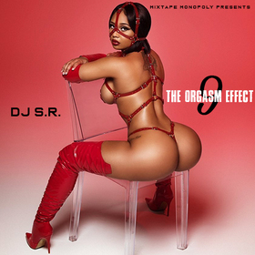 The Orgasm Effect 9 DJ S.R. front cover