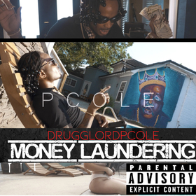 Money Laundering P Cole front cover