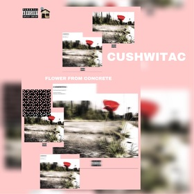 Flower From Concrete CushWitaC front cover