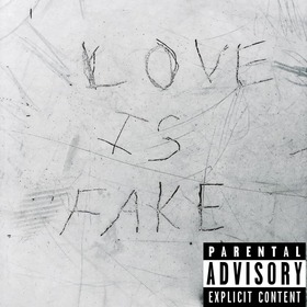 LOVE IS FAKE Leda & Will Metty front cover