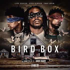 Bird Box (Lips Sealed. Eyes Closed. Trap Open) 3rdy Baby front cover