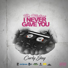 The Mixtape I Never Gave You Hosted by DJ Seizure Curly Jay front cover