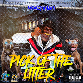 Pick Of The Litter MoneyBabiii front cover