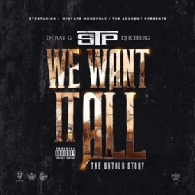 We Want It All DJ Ray G front cover