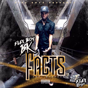 Just Facts The Mixtape FlexBoy BK front cover