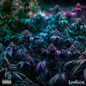 Indica TMack front cover